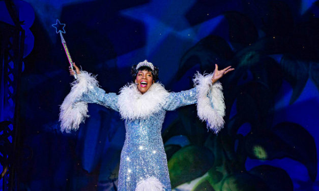 Robert Juliat shines it's lights on the Panto at Joburg Theatre